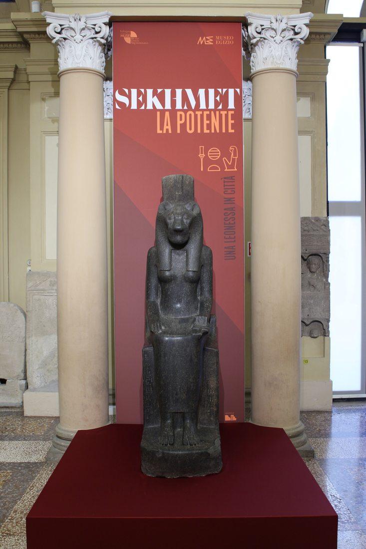 Sekhmet, la Potente. Una leonessa in città al Museo Archeologico di Bologna