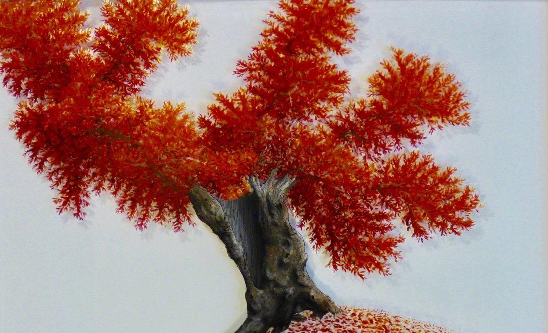 Resilienze… alberi nella stagione del coronavirus