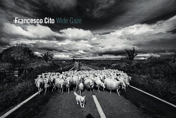 Francesco Cito. Wild Gaze (Un ampio sguardo)