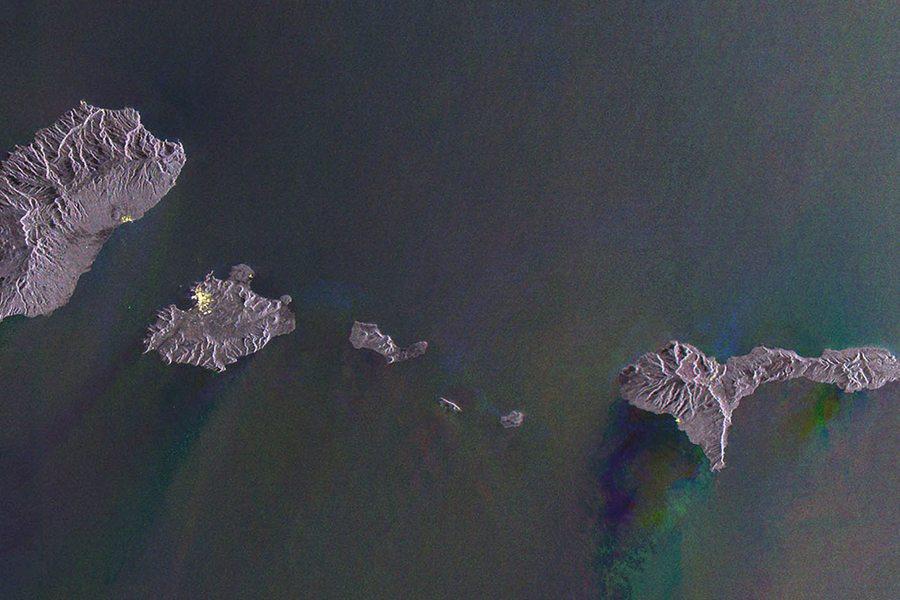 Gayle Chong Kwan. Waste Archipelago