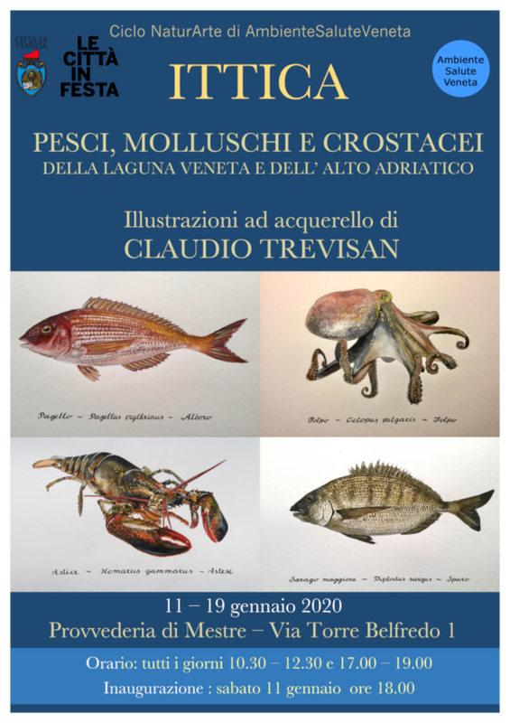 Ittica - Claudio Trevisan