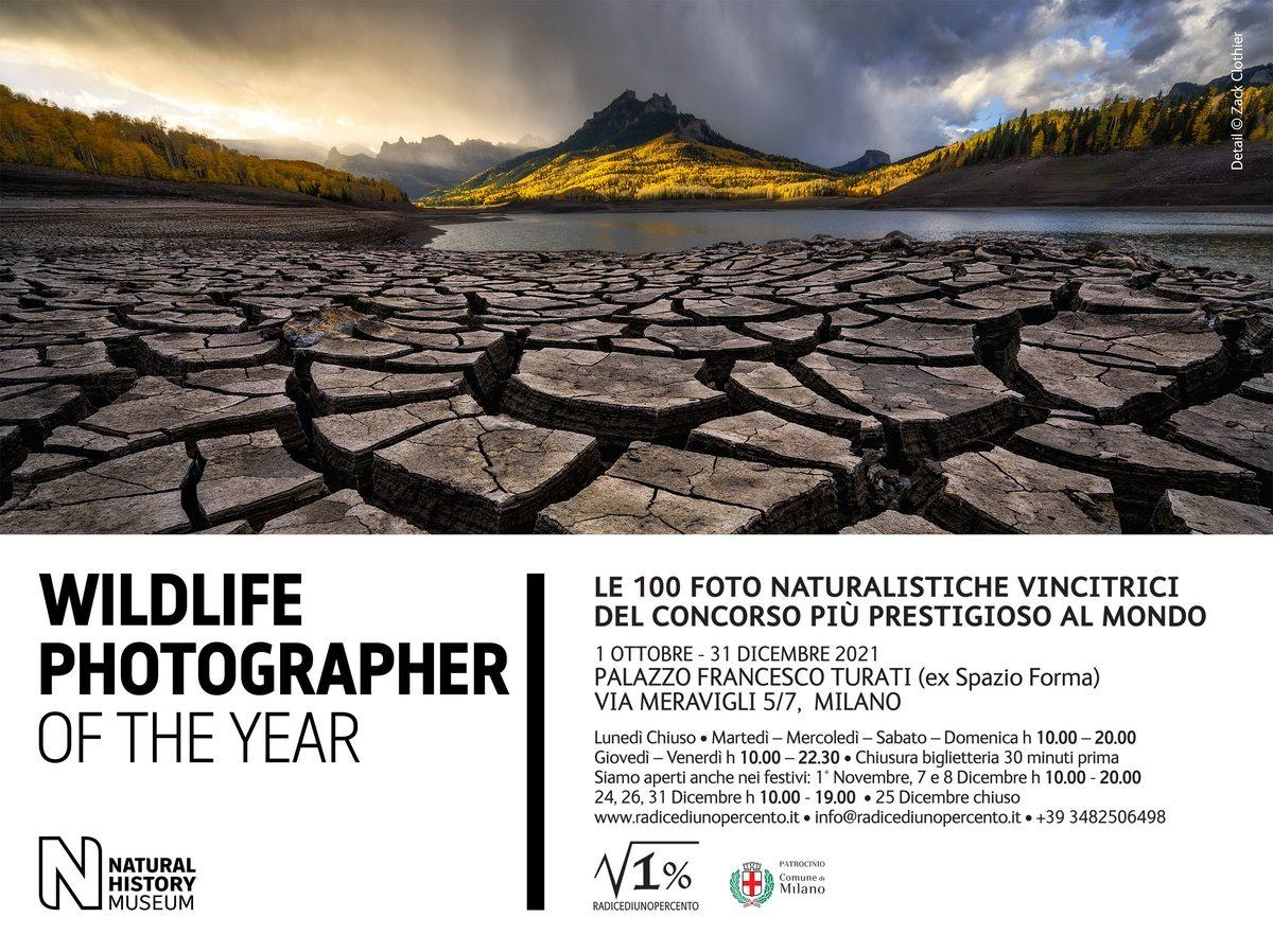 Wildlife Photographer of the Year 2021