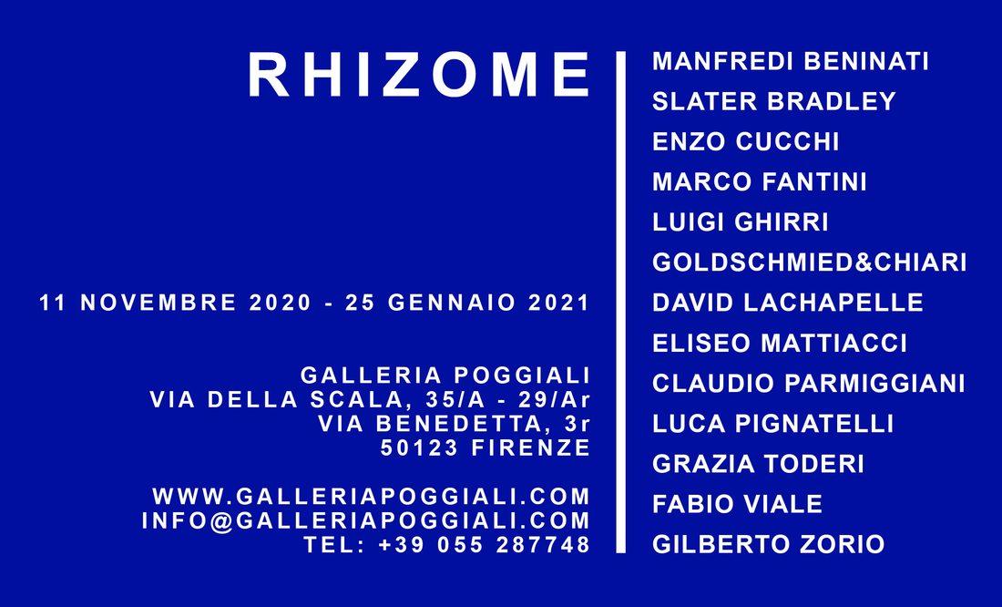 Rhizome, mostra collettiva a Firenze