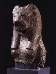 Busto della dea Sekhmet, Museo Civico Archeologico (Sezione Egizia), Bologna, Foto: Sergio Anelli
