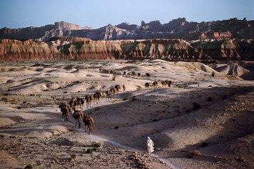 Steve McCurry - Afghan/Pakistan Border, 1981 ©Steve McCurry