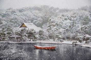 Steve McCurry - Sankei-en Garden. Yokohama, Japan, 2014 ©Steve McCurry
