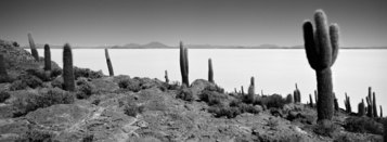 Richard de Tscharner, Isla del Pescado, Bolivia, 2008