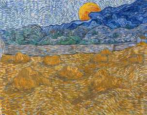 Van Gogh. I colori della vita - Van Gogh Museum, Collection Kröller-Müller Museum Otterlo