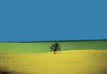 Franco Fontana Landscape, Puglia, 1987 Franco Fontana ©Puglia 1987, Courtesy Franco Fontana Studio
