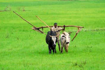 Etiopia. La Bellezza rivelata - Sulle orme degli antichi esploratori