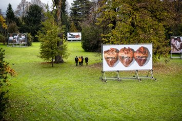 Manifesti 6x3 - prato centrale del parco