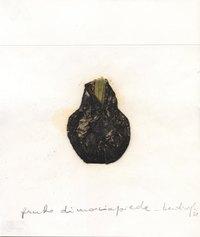 Mirella Bentivoglio, Frutto di marciapiede - 1978 - cm 25x21 - tecnica mista su carta