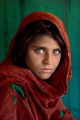 Sharbat Gula, Peshawar, Pakistan, 1984 ©Steve McCurry