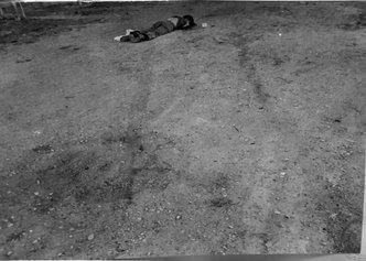 Pier Paolo Pasolini: documenti di un martirio. Atti giudiziari fascicolo procedimento penale 1466/75