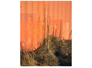Sul confine - Foto di Michele Buda