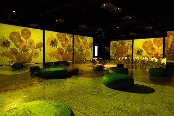 Van Gogh. Il Sogno Immersive Art Experience